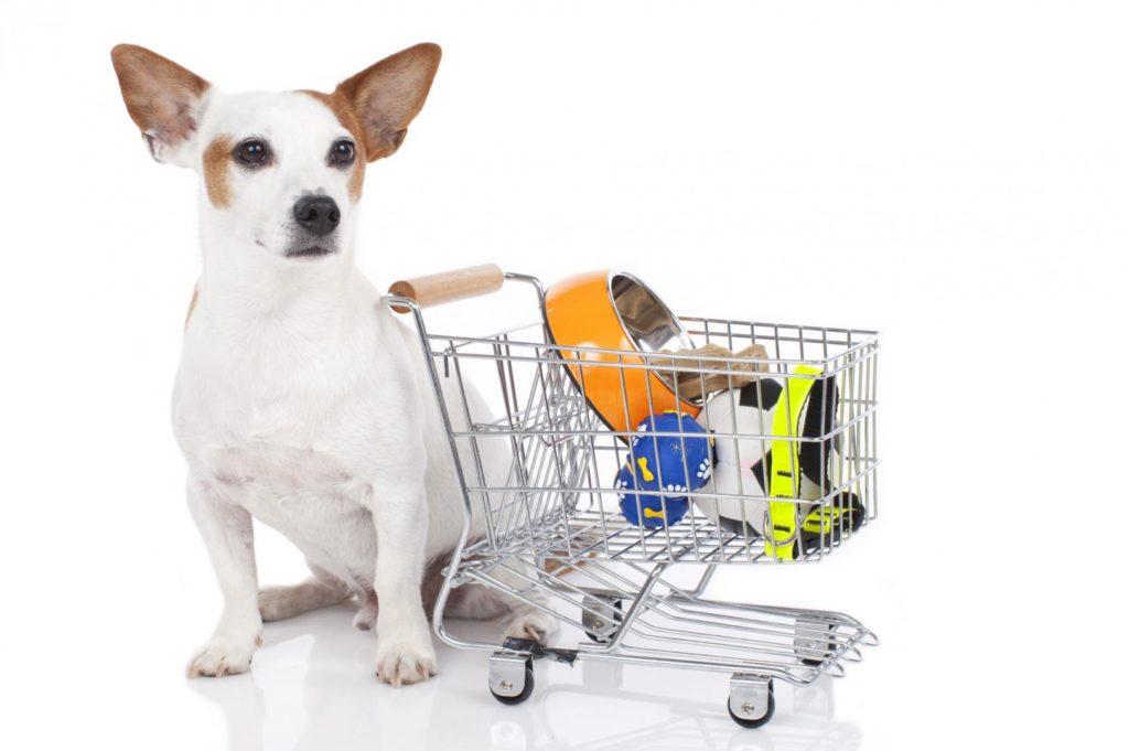 Сертификация товаров для животных